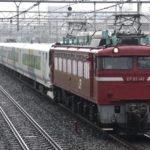 【レア編成見納め】E257系1000番台NA-06編成AT入場