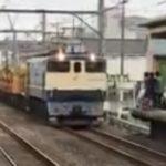 【脚立を使った危険行為】映像が一部始終を捉えた 撮り鉄が列車を緊急停車させる 怒りの警笛に運転士が「こらー!」 駅員が注意しても撮影続行