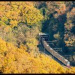 【京王】秋の臨時列車「Mt.TAKAO号」京王ライナー車両・全席指定席で運転 「高尾山トレイン」記念乗車券も発売
