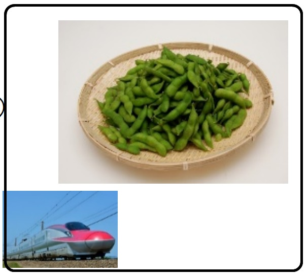 【JR東日本】鮮魚列車をときわ・踊り子号でも実施 新幹線・在来線特急を物流に活用