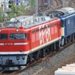 【自走不可】EF64-1031が故障 EF81-95の牽引で長岡へ返却配給