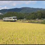 【JR東日本】磐越東線一部区間で紅葉シーズンに徐行運転