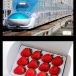JR東日本、いちご新幹線運転へ 新型コロナでの乗客減少で貨物輸送