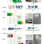 JR東日本、「メモリアル185」記念入場券発売 2021年2月16日~