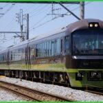【ぐるっと千葉鉄道の旅】リゾートやまどりが団体臨時列車で運転
