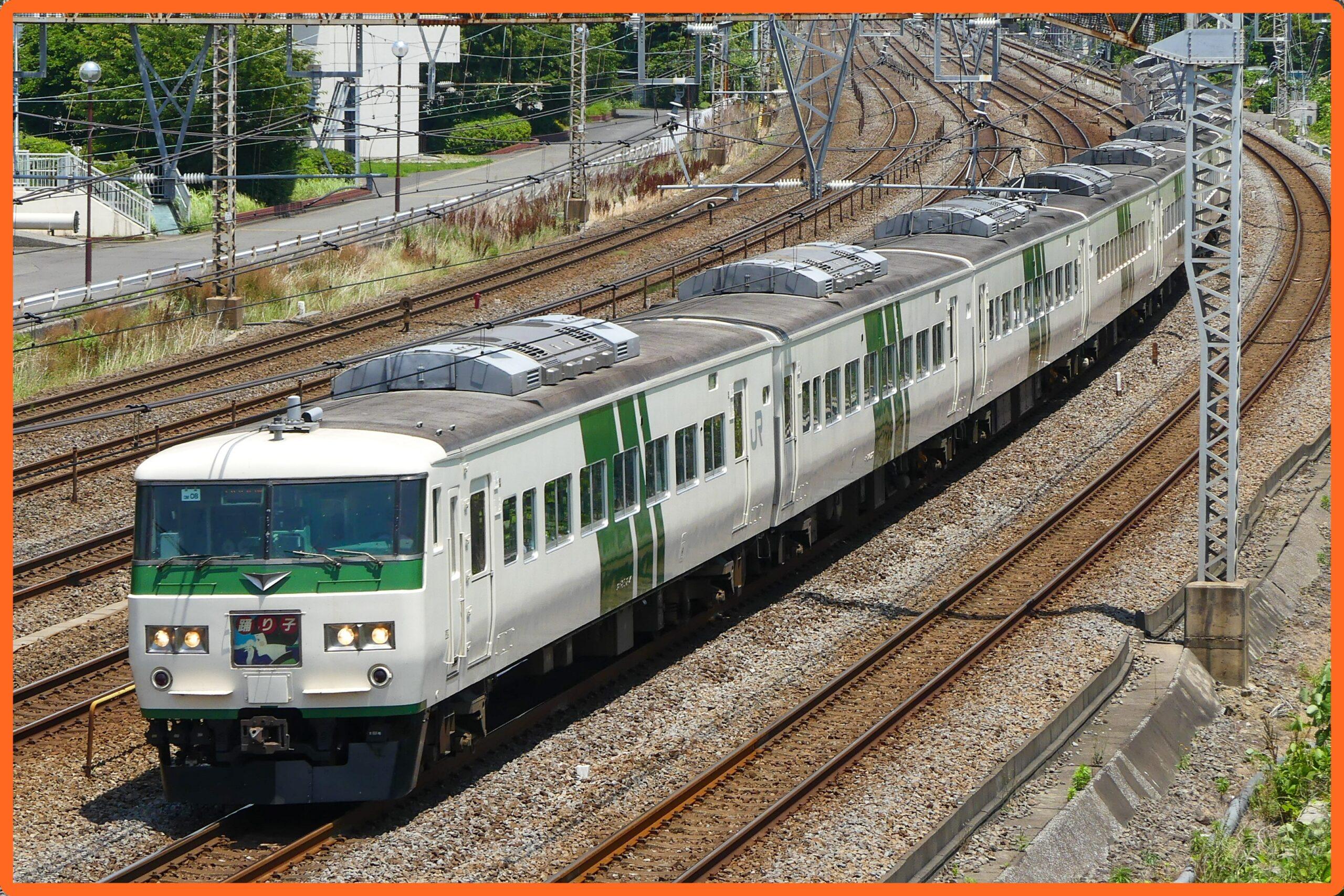 【185系踊り子復活?】東京→伊豆急下田で運転(2021年7月17日㈯)