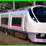ROCK IN JAPAN FESTIVAL 2021に合わせて常磐線特急「ときわ」臨時列車が6本運転 急行列車は設定なし