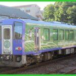 大雨でJR西日本関西本線・加古川線などで運転見合わせに 倒木の被害も